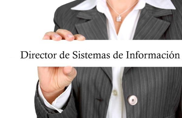 director de sistemas de información