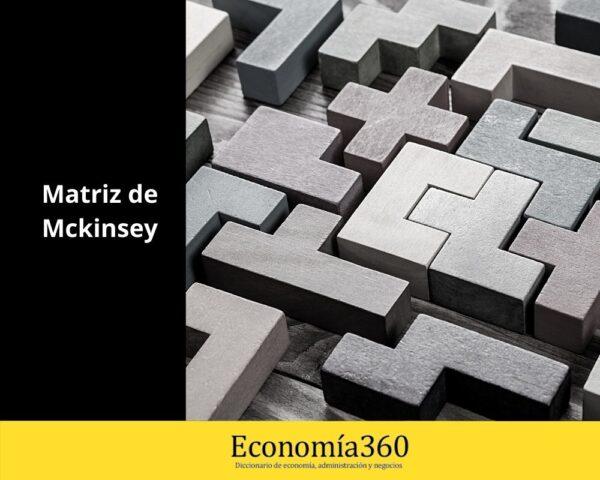 Que es la Matriz de Mckinsey